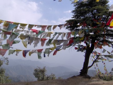 Buddhist prayer flags in Mussoorie, India