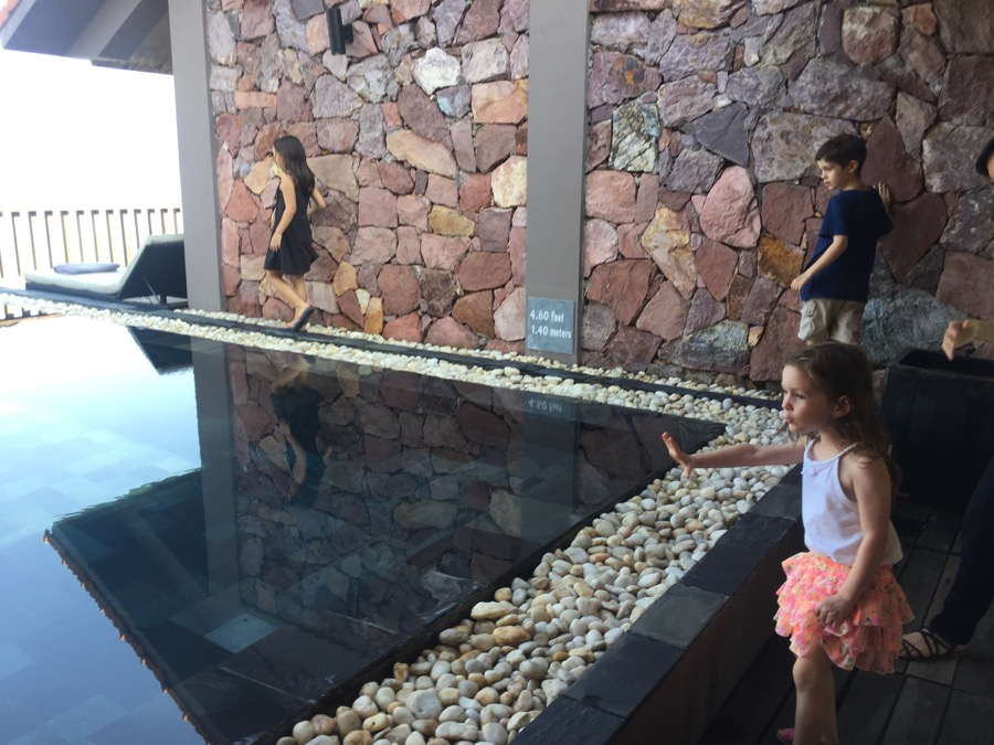 Kids Reaction To The Private Pool
